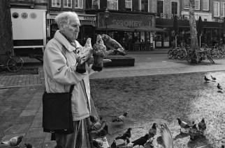 FOTO ONLINE 2018-01 René Vonk Pingeons in Amsterdam 20 pnt