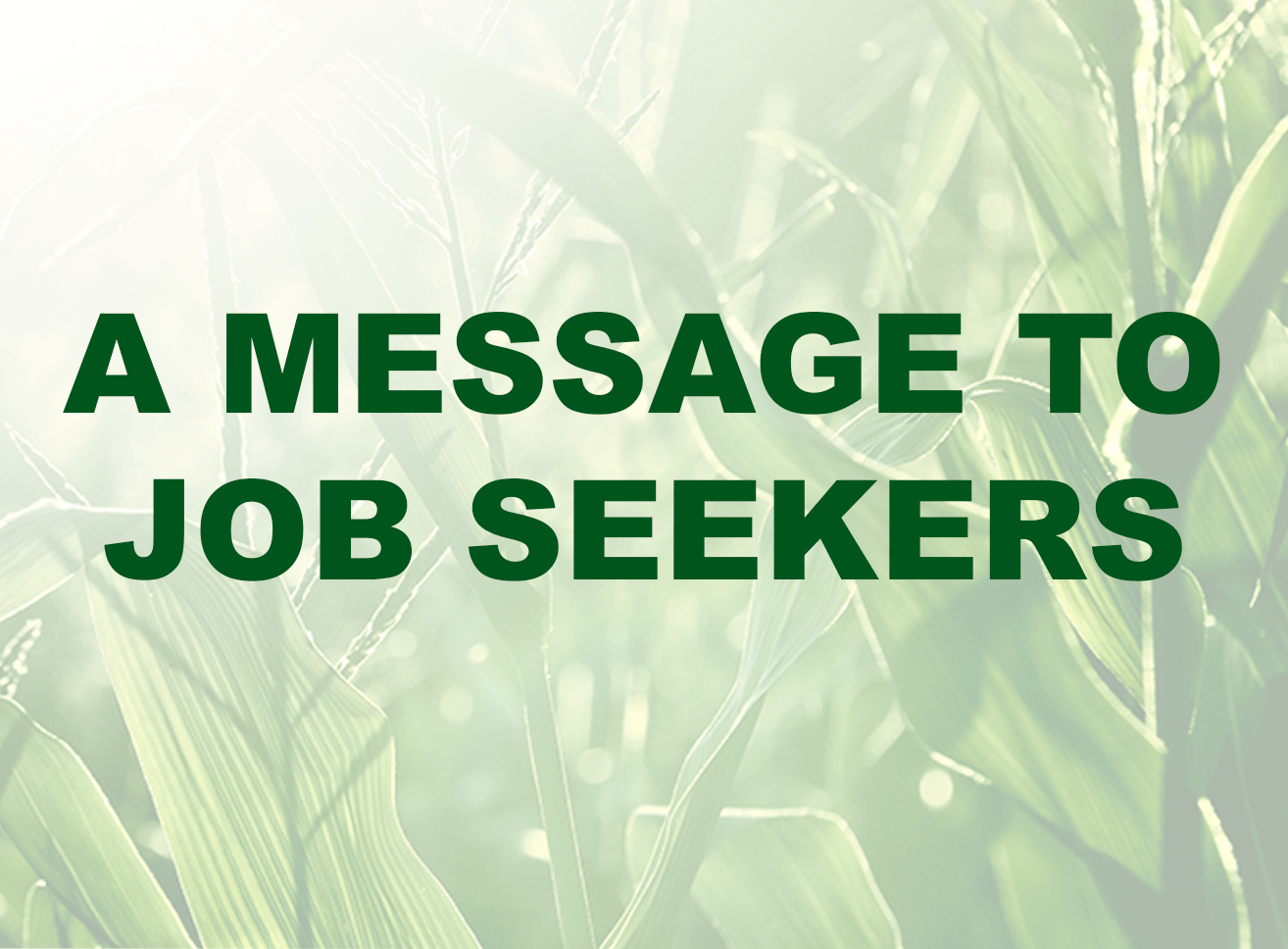 A message to job seekers from the Ag1Source recruiters team