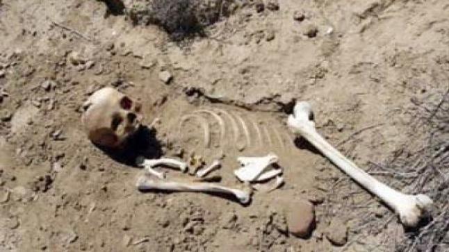 العثور على هيكل بشري بسيدي إفني يستنفر السلطات