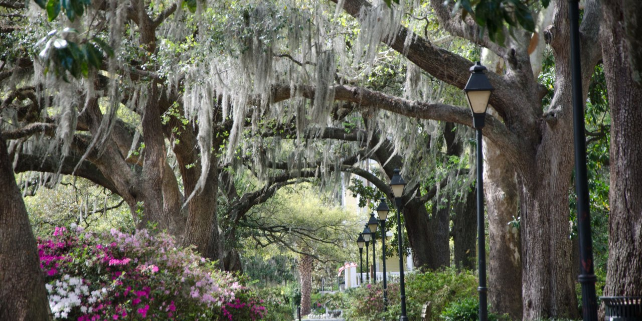 Charleston Conference Call for Preconferences Now Open