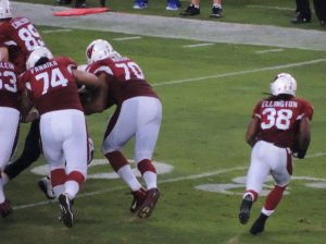 The Arizona Cardinals have been the best bet against the spread. Flickr/http://bit.ly/1UAdgdn