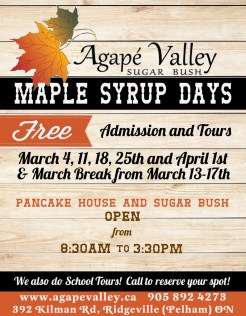 maple syrup days 2017