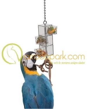 juguete interactivo para agapornis y loros
