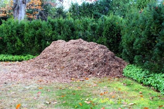 It Good Mulch Leaves Lawn