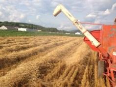 ac 72 harvest