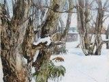 nature sketchbook-栗林(墨・アクリル 8号)