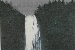 滝 崖の木(リトグラフ)→売却済み