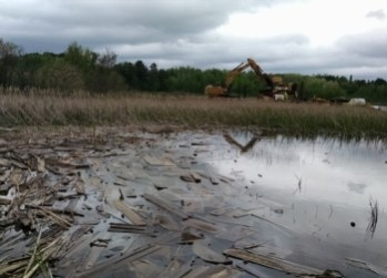During cleanup of the St. Louis River estuary, crews removed tons of detritus from sawmills and other industries that lined its banks. Photo courtesy Minnesota DNR.