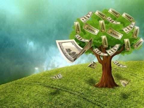 Cash Tree (Pixabay.com)