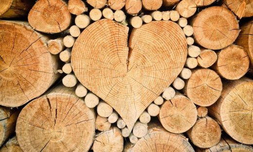 I love lumber. Price may surge further.
