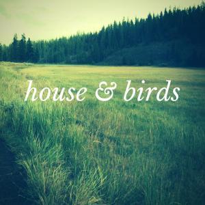 House & Birds - Musique libre de droit - Agence Enregistrer Sous