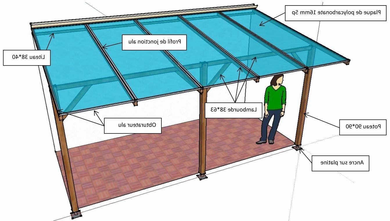 Polycarbonate Pour Veranda Pas Cher Veranda Et Abri Jardin Encequiconcerne Plaque Polycarbonate 4 M Brico Depot Agencecormierdelauniere Com Agencecormierdelauniere Com