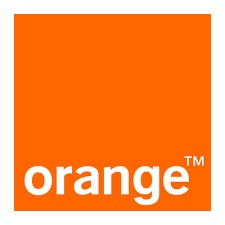 49855 orange1 copy