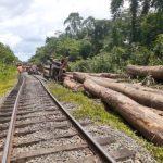 Gabon/Transport ferroviaire : La circulation des trains à nouveau suspendue