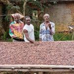 Gabon : Olam soutient les petits agriculteurs et les coopératives dans le Woleu-Ntem