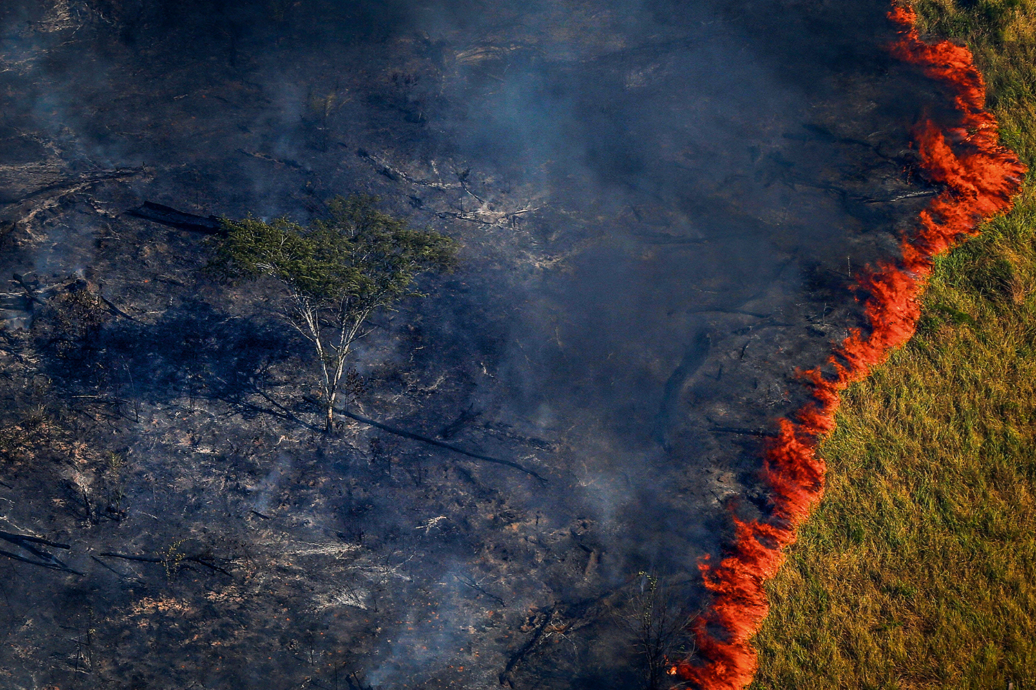 "Burning forest is seen during ""Operation Green Wave"" conducted by agents of the Brazilian Institute for the Environment and Renewable Natural Resources, or Ibama, to combat illegal logging in Apui, in the southern region of the state of Amazonas, Brazil, August 4, 2017. REUTERS/Bruno Kelly?       SEARCH ""DEFORESTATION"" FOR THIS STORY. SEARCH ""WIDER IMAGE"" FOR ALL STORIES."