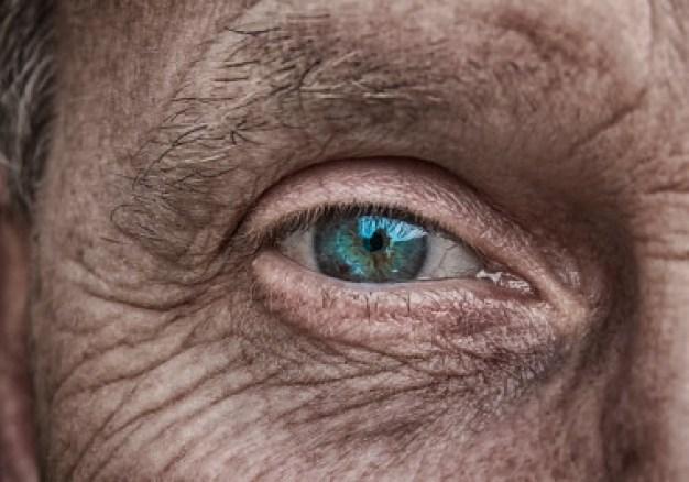 """<p>La región del cerebro humano conocida como giro dentado produce nuevas neuronas hasta la novena década de vida./ <a href=""""https://pixabay.com/es/photos/piel-ojo-iris-azul-mayores-doble-3358873/"""" target=""""_blank"""">Pixabay</a></p>"""