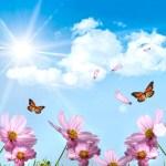 As seis condições do espírito imortal