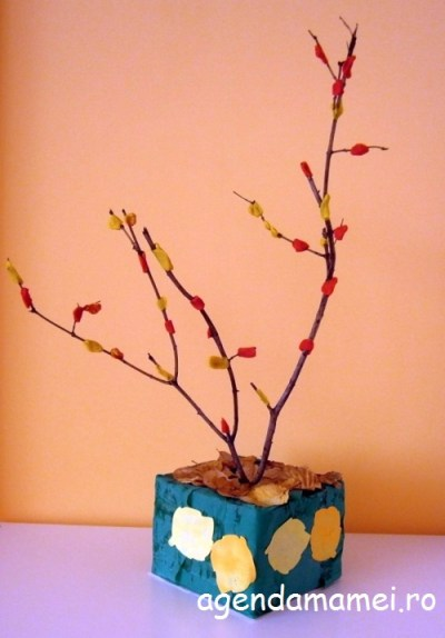 copacel tomnatic