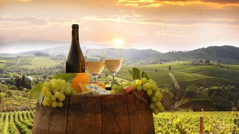 Il programma delle cantine socie del Movimento Turismo del Vino che partecipano a Cantine Aperte in Campania.