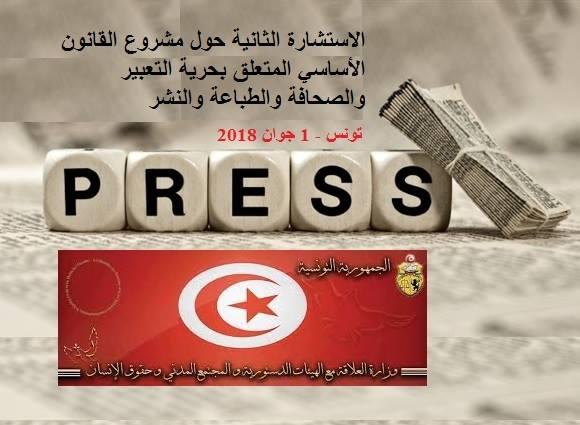 استشارة حول قانون حرية التعبير والصحافة والطباعة والنشر