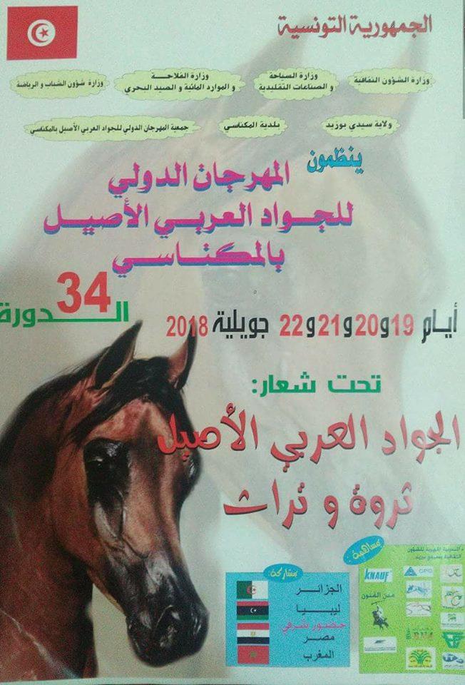 المهرجان الدولي للجواد العربي الأصيل الدورة 34 بالمكناسي