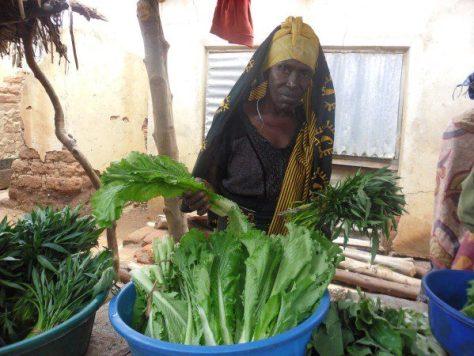Mbogamboga