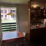 Appartamento Abetone Boscolungo Due Vani Mq 50 Piano Terra (9)