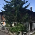 Appartamento Abetone Faidello Mansarda Quattro Vani Mq 90 (55)