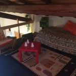 Appartamento Indipendente Abetone Faidello Tre Vani Mq 75 (53)