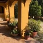 Villa Leopoldina Mq 400 Firenze Pontassieve 15 vani terreno 2,5 Ettari Appartamento Loggiato (16)