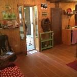 Villa Terra Tetto Doganaccia Due Vani MQ 75 Giardino MQ 450 (65)
