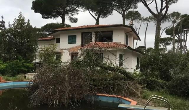 Villa con Piscina Pietrasanta Tonfano Mq 450