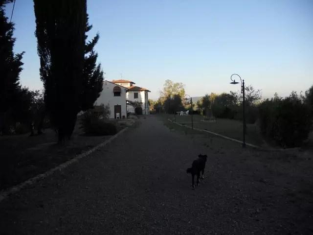 Villetta Terra Tetto Montelupo Fiorentino Botinaccio Mq 180 (20)