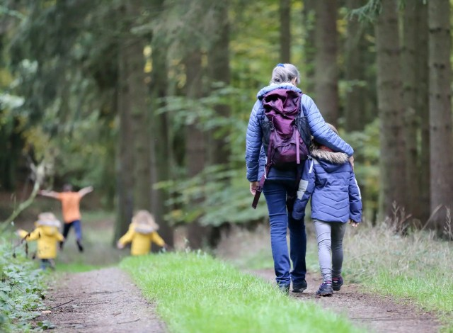 A family walking in the forest