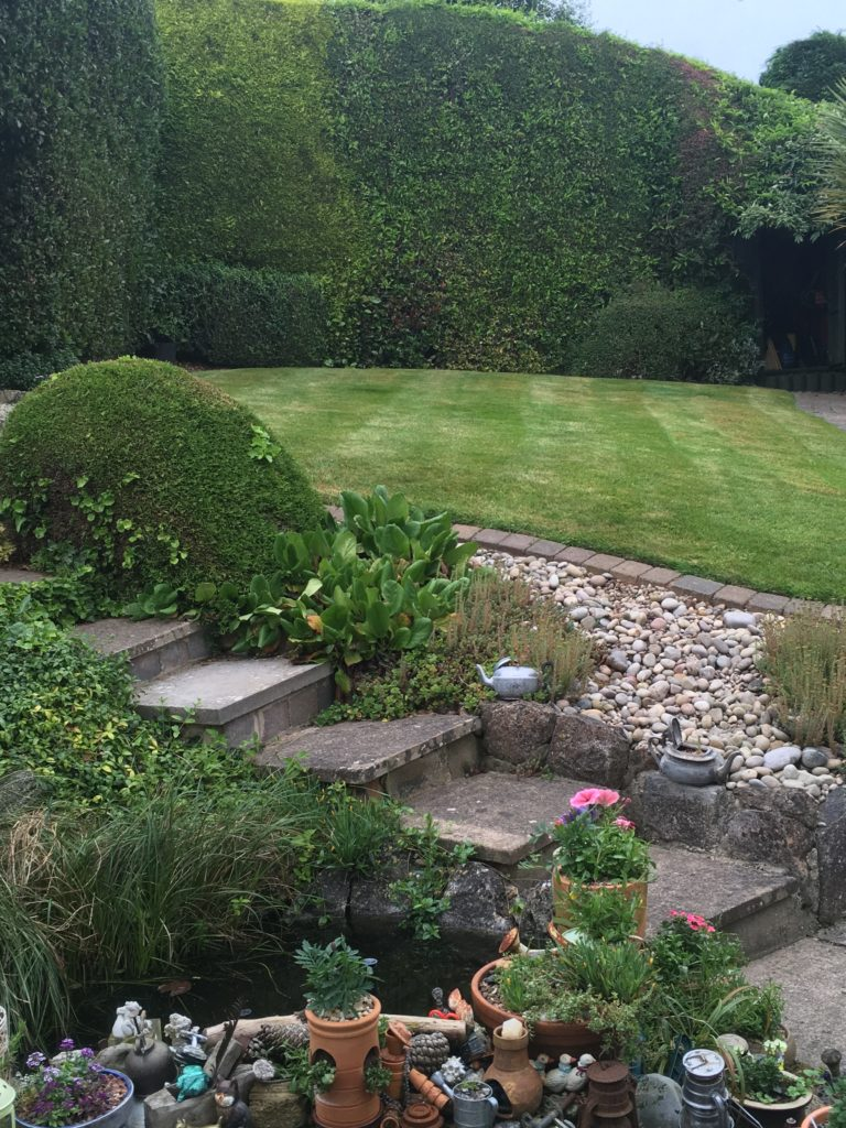 Exeter garden and borders maintained by Aggett Bros Garden and Grounds Maintenance