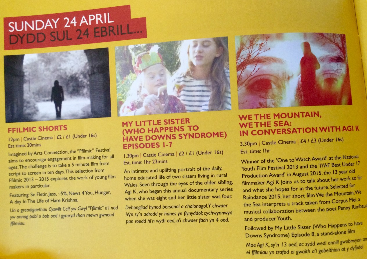 Wyeside Inside Out Festival brochure with My LIttle Sister...films programmed