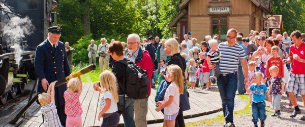 Vändskiva i Gräfsnäs. Foto: Harald Brauer