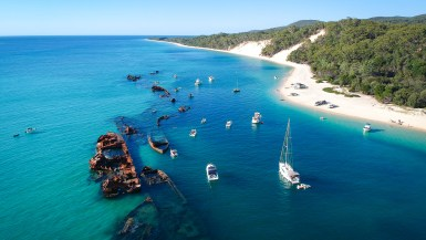 Shipwrecks, sand dunes, and dolphins: Tangalooma day trip from Brisbane