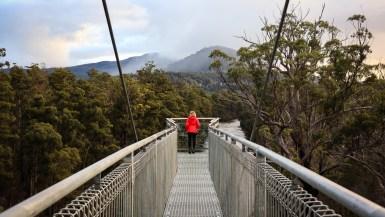Tahune Airwalk in the Huon Valley, Tasmania