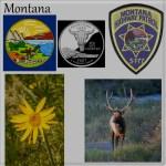 montana-montage-beveled