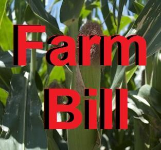 farm bill field hearing debate