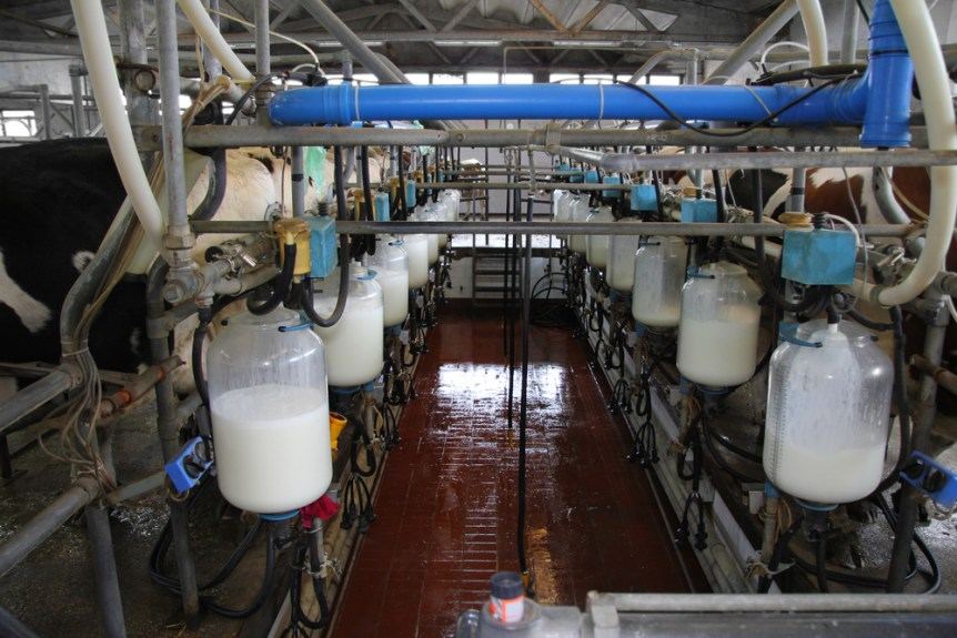 California federal milk marketing order