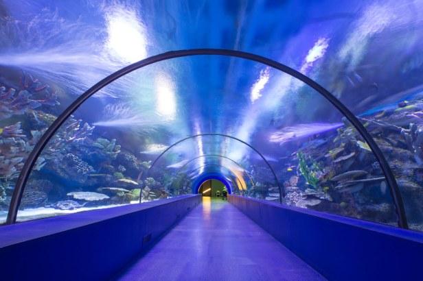 Aquaria KLCC_Kuala Lumpur_Malaysia