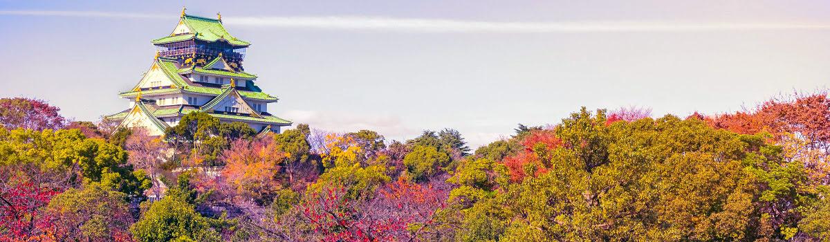 Fall foliage in Osaka, Japan
