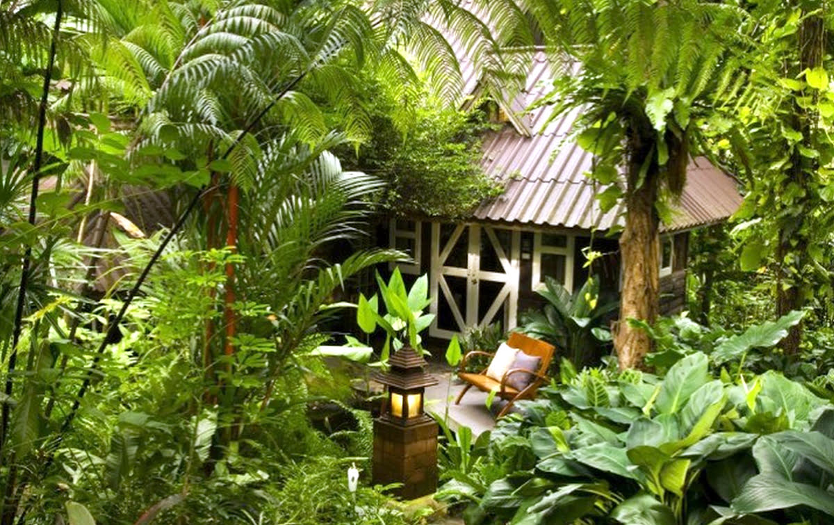 Wilderness hotels-resorts-accommodations-Rain Forest Resort
