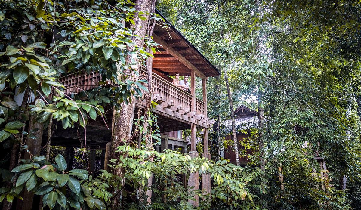 Wilderness hotels-resorts-accommodations-The Datai Langkawi