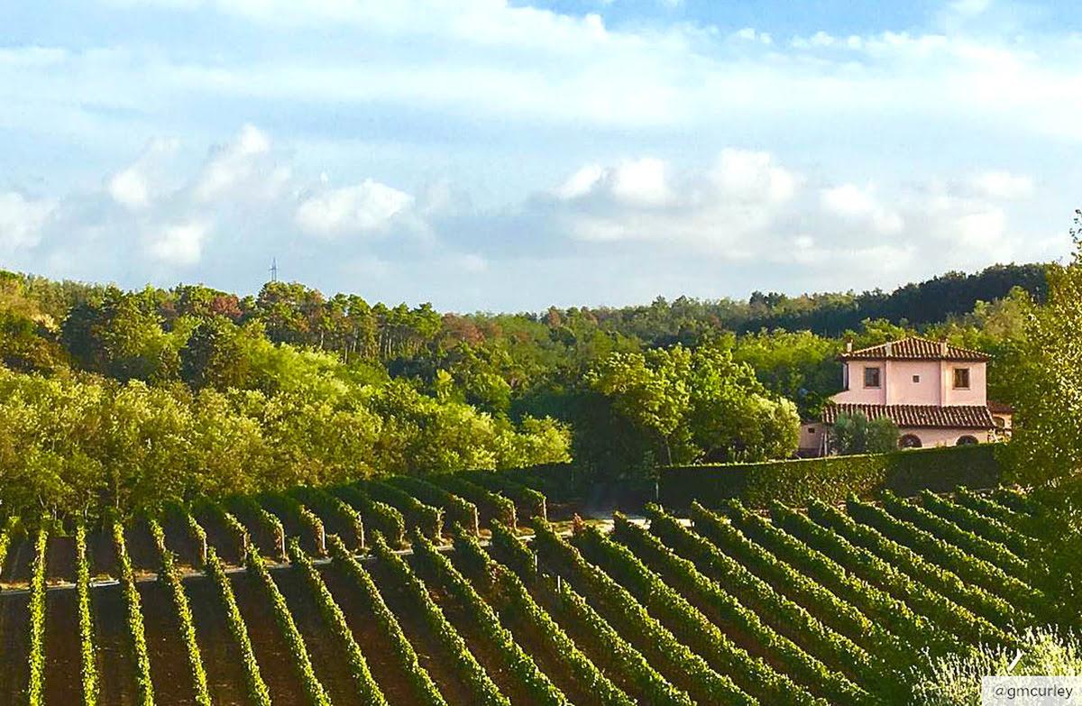 ทัวร์ชิมไวน์-ทัสคานี-Castello di Fonterutoli-Poderi Di Capo Duomo Estate