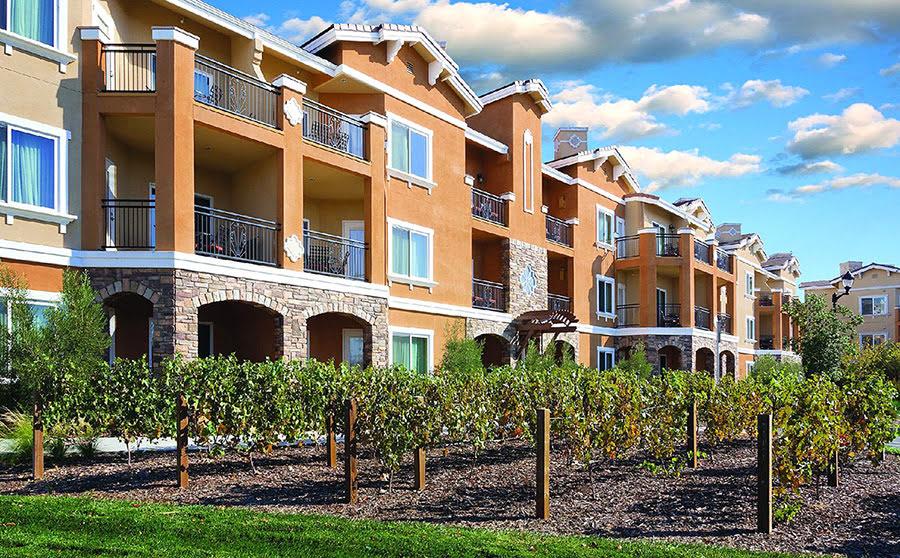 Hotels near vineyards-wine tasting tour-Vino Bello Resort