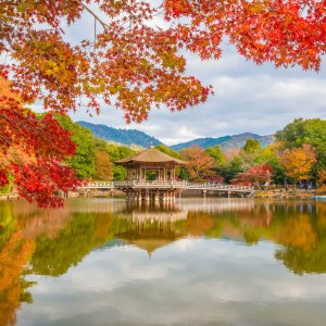 Nara, Japon